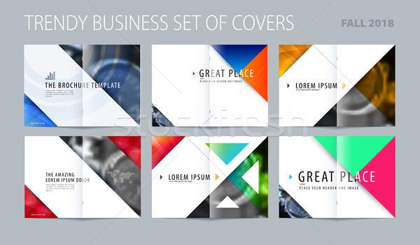 Streszczenie broszura projektu stylu kolorowy branding Zdjęcia stock © Diamond-Graphics