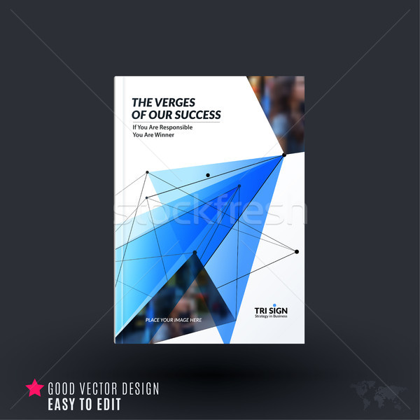 Design of brochure, abstract annual report, cover modern Stock photo © Diamond-Graphics
