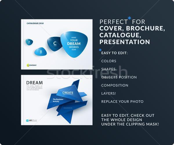 Affaires design brochure résumé annuel Photo stock © Diamond-Graphics