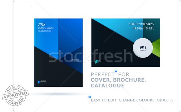 Anyag design sablon kreatív kék színes absztrakt Stock fotó © Diamond-Graphics