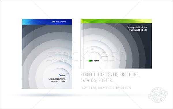 Brosúra terv sablon színes kék kreatív Stock fotó © Diamond-Graphics