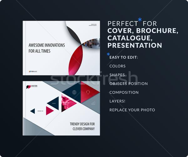 Material Design Präsentation Vorlage rot farbenreich Stock foto © Diamond-Graphics