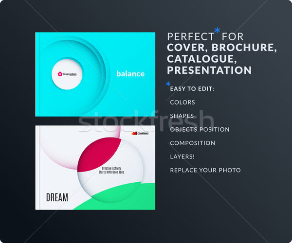 Presentation. Abstract vector set of modern horizontal templates with colourful rays, circles for bu Stock photo © Diamond-Graphics