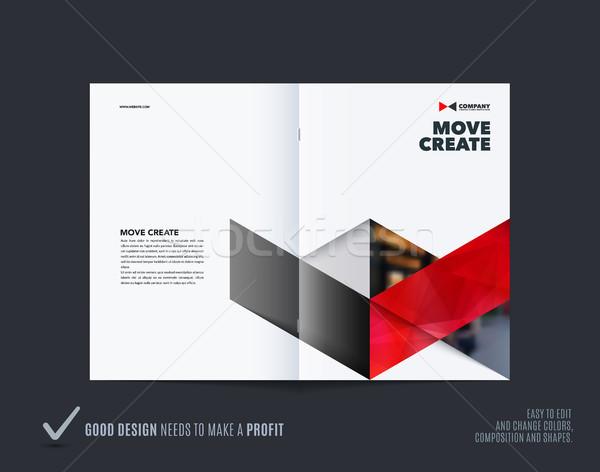 Streszczenie broszura projektu sześciokąt stylu kolorowy Zdjęcia stock © Diamond-Graphics