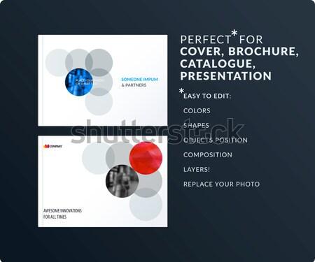 Abstract vector ingesteld moderne horizontaal website Stockfoto © Diamond-Graphics
