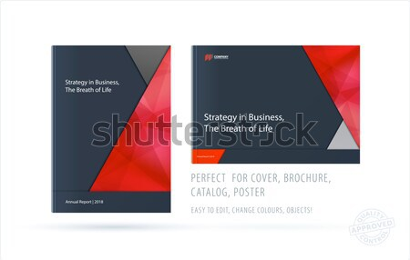 Abstract double-page brochure material design style with colourful layers for branding. Business vec Stock photo © Diamond-Graphics