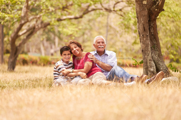 Grandparents Senior Couple Hugging Young Boy On Grass Stock photo © diego_cervo