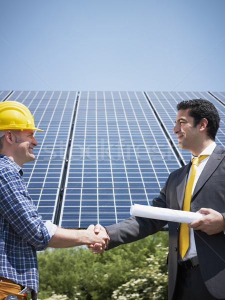 businessman and electrician shaking hands Stock photo © diego_cervo