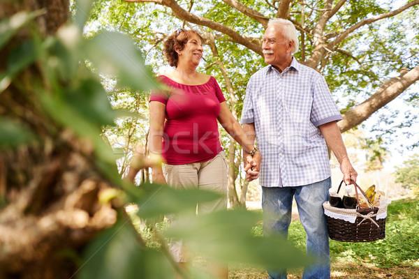 Yaşlı adam kadın yürüyüş piknik sepeti yaşlı çift Stok fotoğraf © diego_cervo