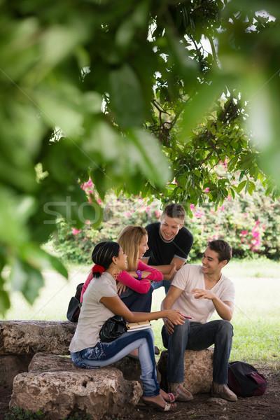 Stock fotó: Egyetem · diákok · megbeszélés · teszt · emberek · oktatás