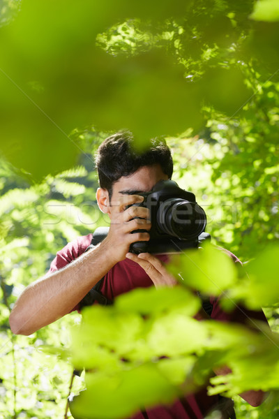 Stockfoto: Jonge · mannelijke · fotograaf · wandelen · bos · latino