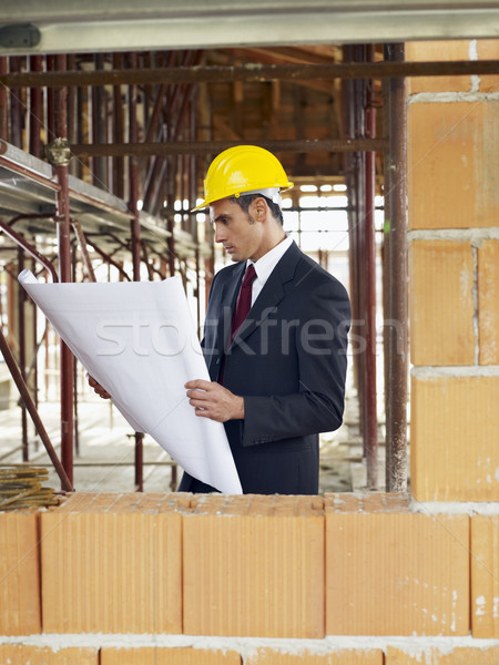 architect in construction site Stock photo © diego_cervo