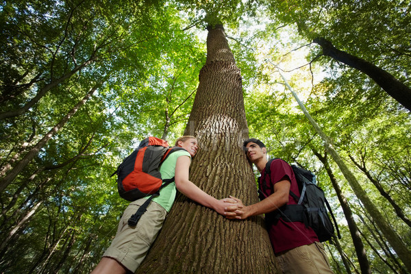 environmental conservation: young hikers embracing large tree Stock photo © diego_cervo