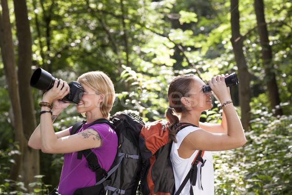 Stock fotó: Két · nő · kirándulás · erdő · néz · látcső · fiatalok