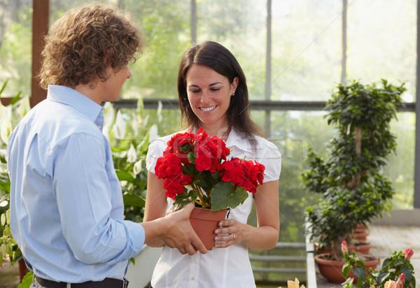 couple shopping in garden center Stock photo © diego_cervo