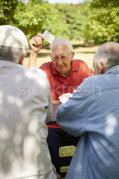 Active seniors, group of old friends playing cards at park Stock photo © diego_cervo