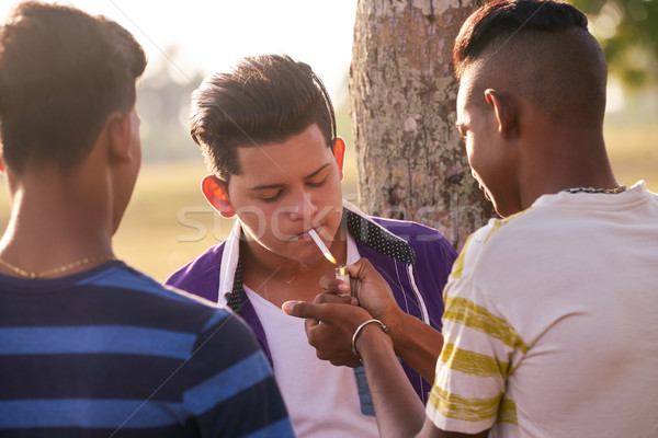 Group Of Teenagers Boy Smoking Cigarette With Friends Stock photo © diego_cervo