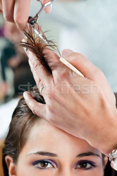 美容院 若い女性 髪 カット 狭い ストックフォト © diego_cervo