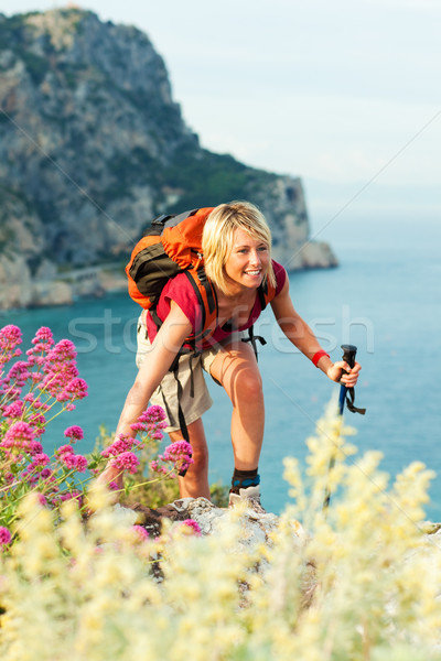 woman hiking Stock photo © diego_cervo