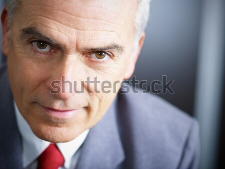 mature businessman looking at camera Stock photo © diego_cervo