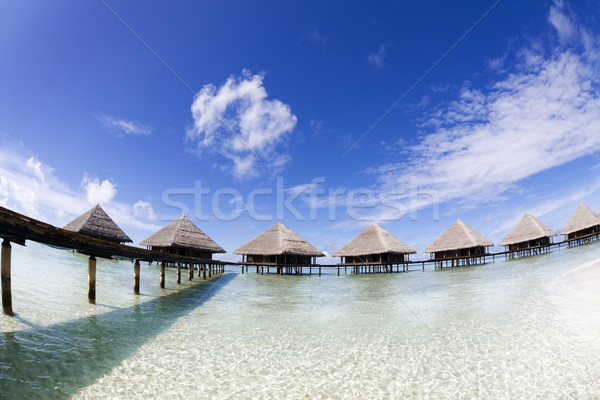 tropical beach Stock photo © diego_cervo