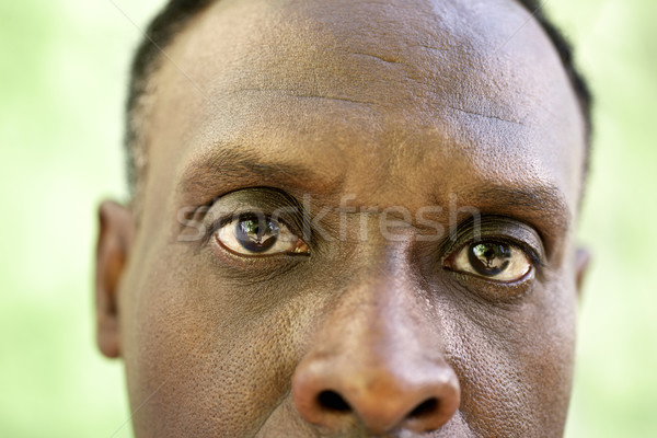 Portrait of serious old black man looking at camera Stock photo © diego_cervo