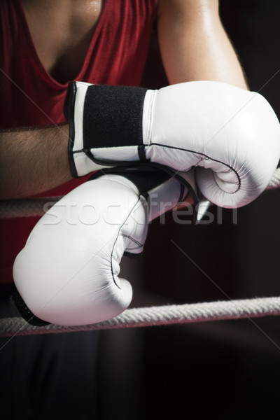 boxing Stock photo © diego_cervo