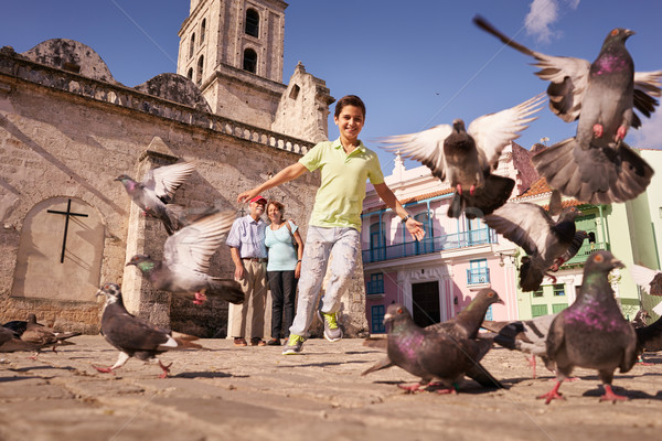 Grandparents And Grandson Boy Chasing Pigeons Flying Stock photo © diego_cervo