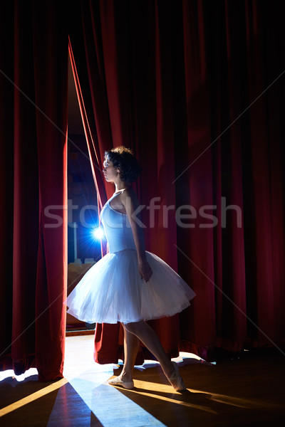 woman as classic dancer looking at stalls before ballet Stock photo © diego_cervo