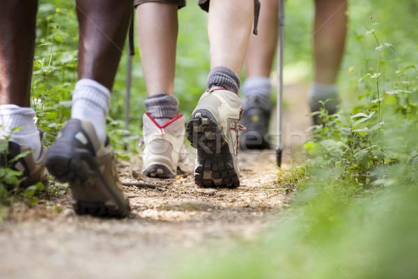 Stock fotó: Cipők · emberek · trekking · fa · sétál · csetepaté