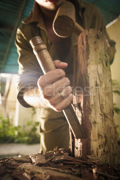Young Sculptor Artist Working And Sculpting Wood Statue-3 Stock photo © diego_cervo