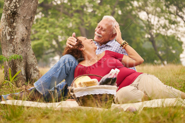 Elderly Couple Senior Man And Woman Doing Picnic Stock photo © diego_cervo