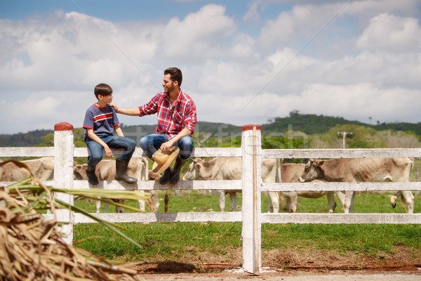 Happy Father And Son Smiling In Farm With Cows Stock photo © diego_cervo