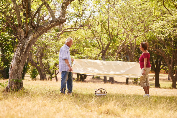 Retired Couple Senior Man And Woman Doing Picnic Stock photo © diego_cervo