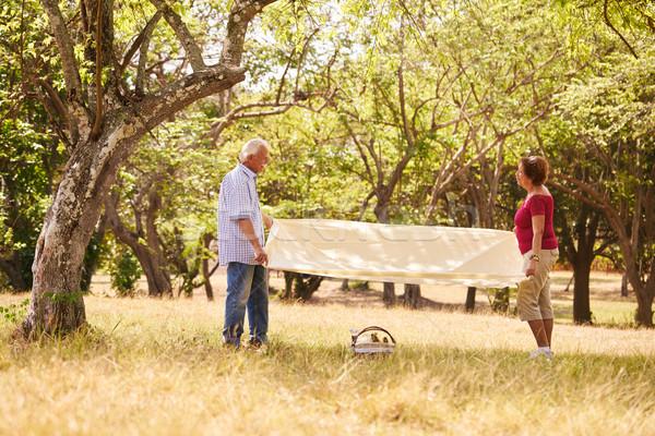 Nyugdíjas pár idős férfi nő piknik Stock fotó © diego_cervo