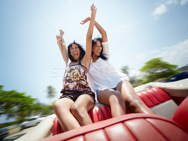 beautiful twin sisters having fun in cabriolet car Stock photo © diego_cervo