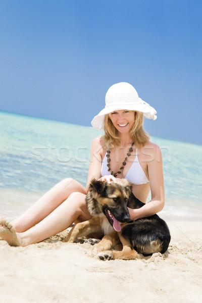 dog Stock photo © diego_cervo