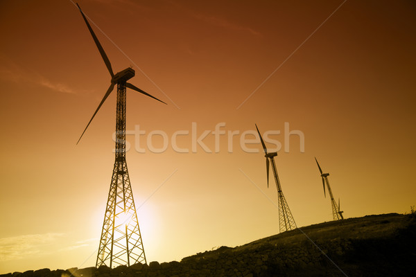 Environmental conservation: wind turbines against the sunset