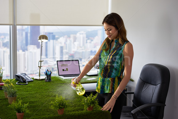 Ecologist Business Woman Watering Plants In Corporate Office Stock photo © diego_cervo