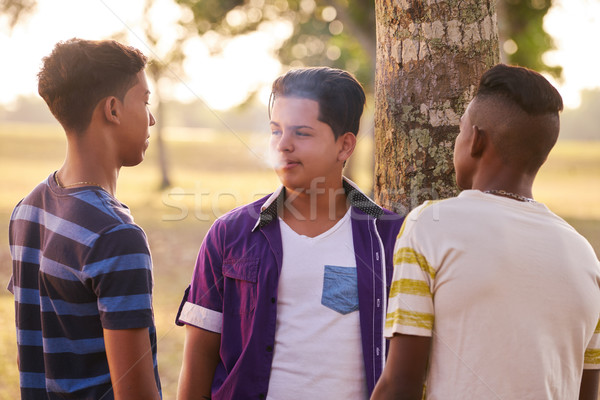 Teenagers In Park Boy Smoking Electronic Cigarette Stock photo © diego_cervo