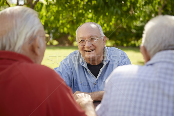 Group of senior men having fun and laughing in park Stock photo © diego_cervo