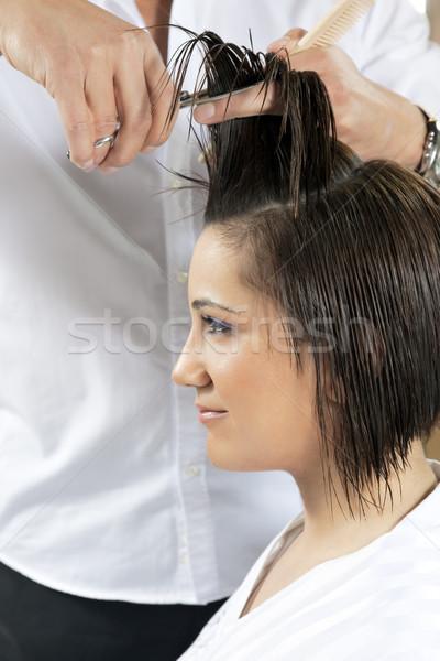 美容院 肖像 若い女性 髪 女性 手 ストックフォト © diego_cervo