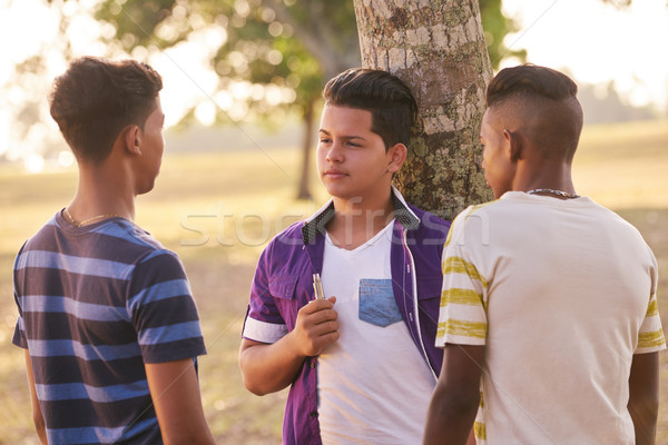 Group of Teens In Park Boy Smoking Electronic Cigarette Stock photo © diego_cervo