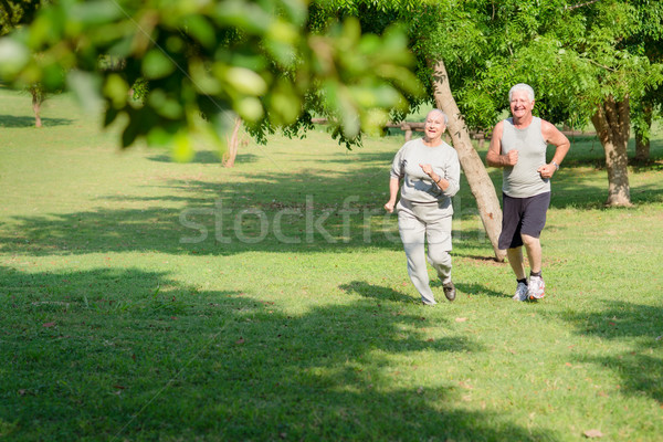 Aktif kıdemli insanlar jogging şehir park Stok fotoğraf © diego_cervo