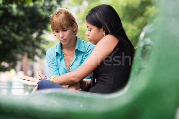 Stock photo: college students studying on textbook in park