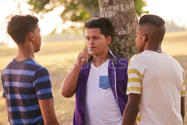 Group of Teenagers In Park Boy Smoking Electronic Cigarette Stock photo © diego_cervo