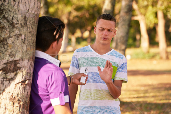 Teenagers Smoking Boy Refusing To Smoke E-cig Stock photo © diego_cervo