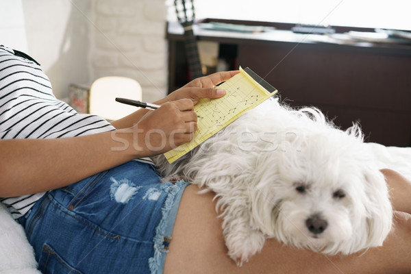 Girl Studying For School Homework With Dog On Legs Stock photo © diego_cervo