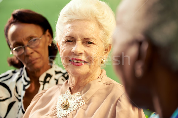Group of elderly black and caucasian women talking in park Stock photo © diego_cervo