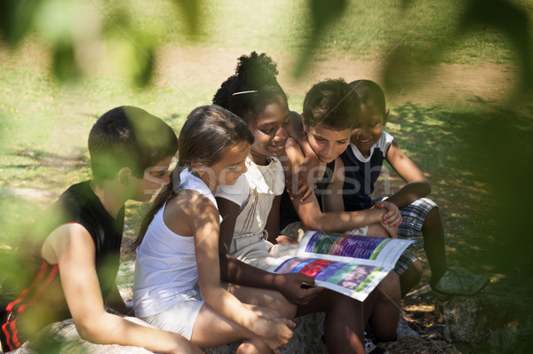 Children and education, kids and girls reading book in park Stock photo © diego_cervo